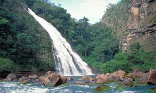 Bolívia - Melhores Pontos turísticos - parque-nacional-noel-kempff