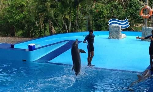 Passeios em Punta Cana - Manati Park