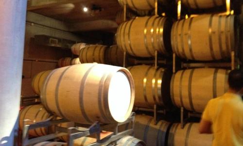 Visita guiada a Ruca Malen - Mendoza terra do vinho Argentino cervar o vinho