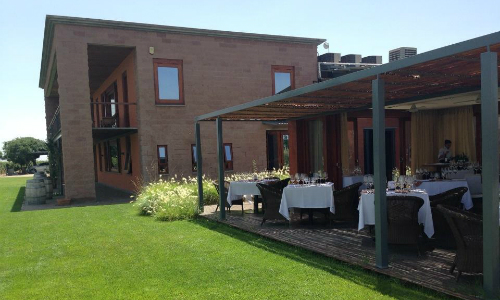 Visita guiada a Ruca Malen - Mendoza terra do vinho Argentino local degutação