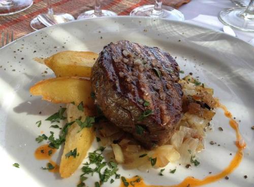 Visita guiada a Ruca Malen - Mendoza terra do vinho Argentino prato
