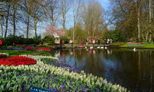 Jardim Keukenhof - O mais Bonito jardim de flores do Mundo - 01