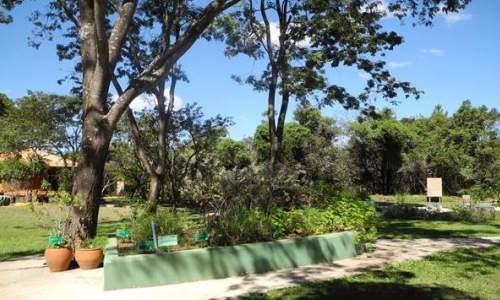 Jardim Botânico de Brasília - 02