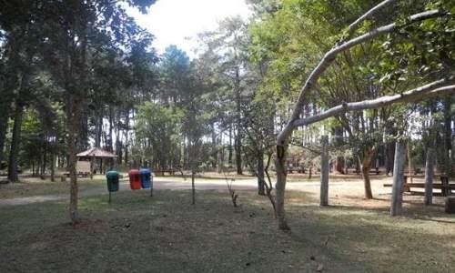 Jardim Botânico de Brasília - 03