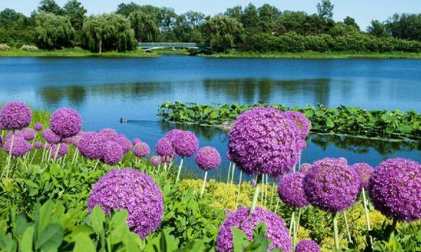 Jardim Botânico de Chicago
