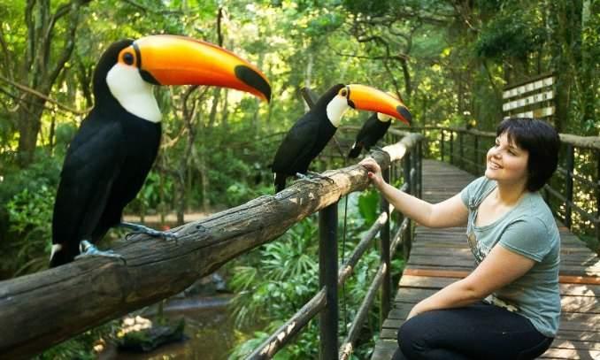 Melhores pontos turísticos Foz do Iguaçu - Parque das Aves